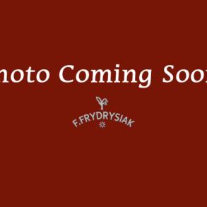 Poerschmann – simple / Professional – inexpensive